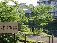 ほたる公園.jpg