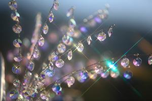 ガラスのススキ.jpg